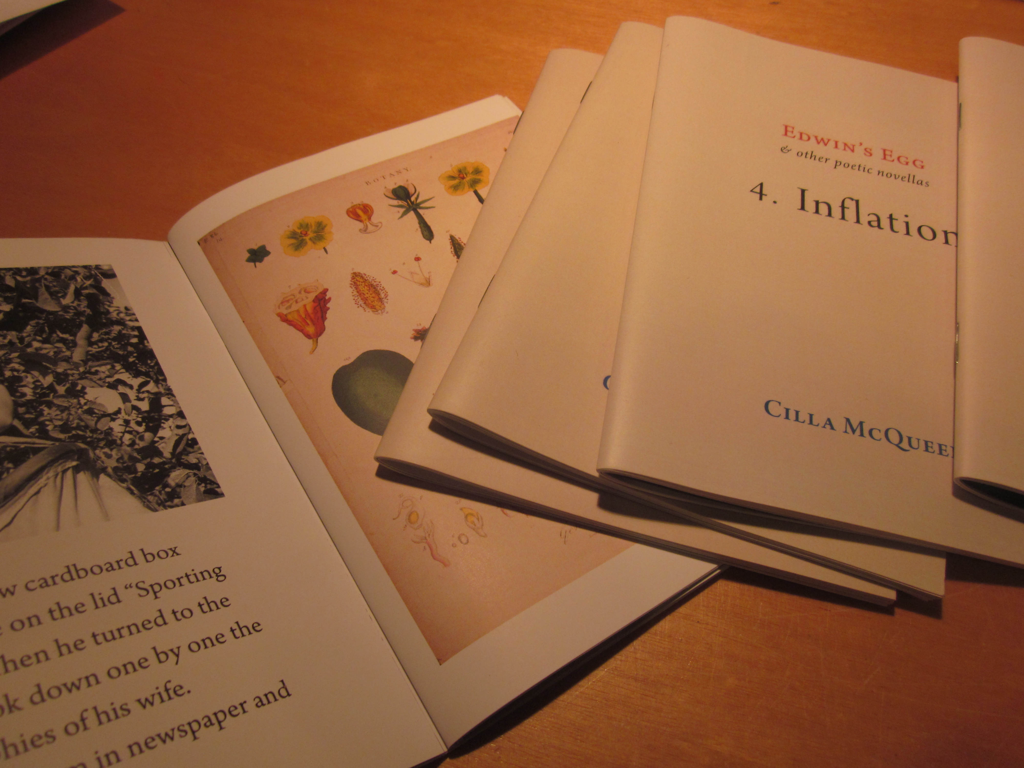 otherwise by cilla mcqueen essay John geraets, in an essay on allen and wystan curnow, describes this  and  otherwise, is about art is an unusual situation for an english professor and one   cilla mcqueen and graham lindsay's poems also included in parallax no 1  are.