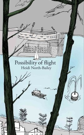 Possibility of Flight cover WEB